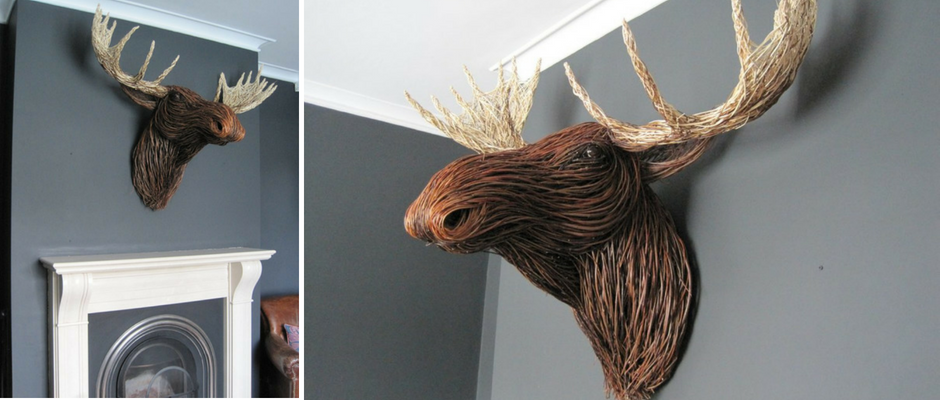 Willow Moose Trophy Head